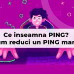 ce inseamna ping